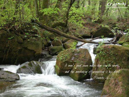 Papel de parede Provérbios 19:11 para download gratuito. Use no computador pc, mac, macbook, celular, smartphone, iPhone, onde quiser!