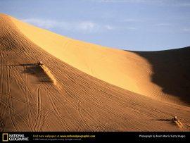 Papel de parede Quadriciclos no Deserto