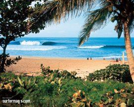 Papel de parede Recanto surfista