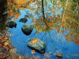 Papel de parede Reflexo na água