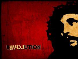 Papel de parede Revolução/Amor