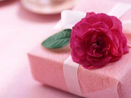 Papel de parede Rosa e presente