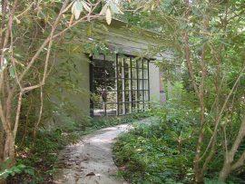 Papel de parede Ruinas no jardim