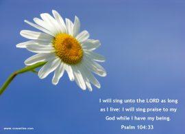 Papel de parede Salmo 104:33