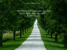 Papel de parede Salmo 119:105