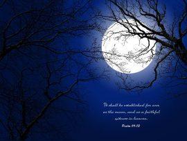 Papel de parede Salmo 89:73