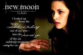 Papel de parede Sangue – Edward e Bella