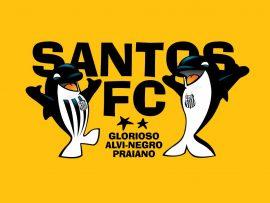 Papel de parede Santos – Glorisoso Alvinegro Paulista