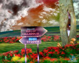 Papel de parede Segovia