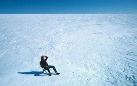 Papel de parede Sozinho na neve