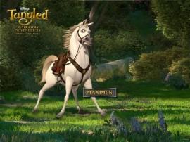 Papel de parede Cavalo Maximus – Rapunzel