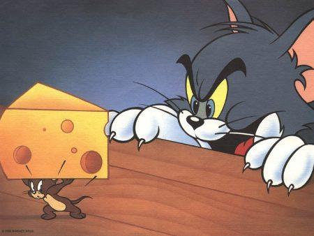 Papel de parede Tom & Jerry – Rivais para download gratuito. Use no computador pc, mac, macbook, celular, smartphone, iPhone, onde quiser!