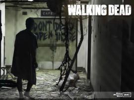 Papel de parede The Walking Dead: Seriado