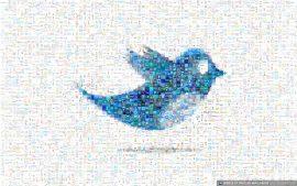 Papel de parede Twitter é uma rede