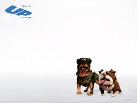 Papel de parede Up, da Pixar