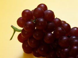 Papel de parede Uva – Para o Vinho