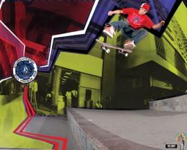 Papel de parede Skate Volcom