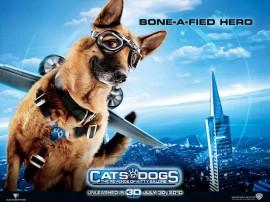 Papel de parede Bone a Fied Hero – Como Cães e Gatos