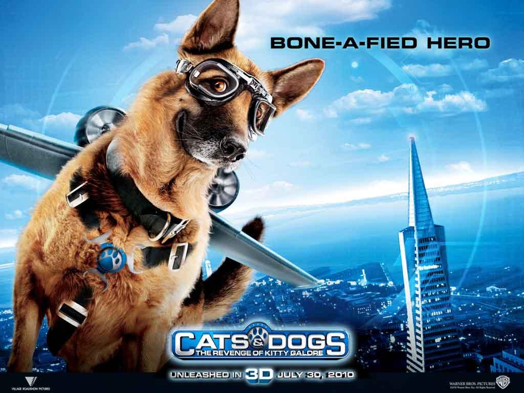 Papel de parede Bone a Fied Hero – Como Cães e Gatos para download gratuito. Use no computador pc, mac, macbook, celular, smartphone, iPhone, onde quiser!