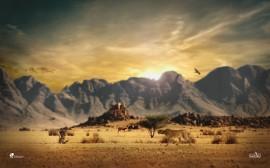 Papel de parede Pôr do Sol na savana